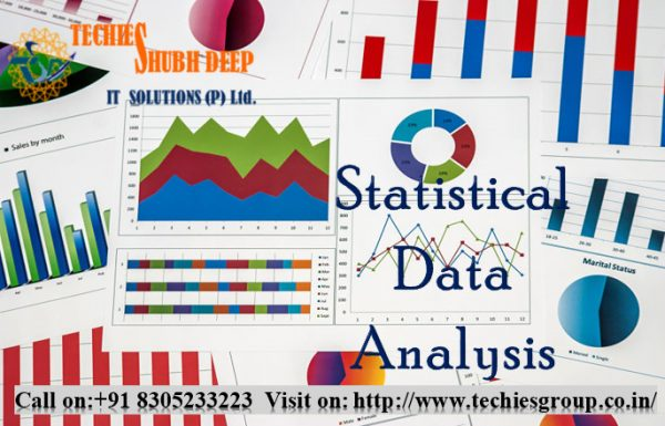 Statistical Data Analysis Services